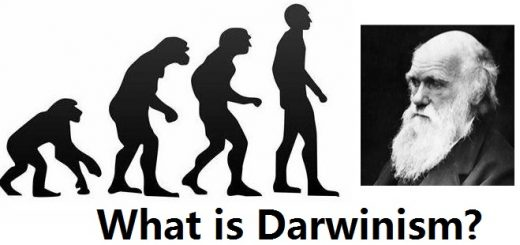 What is Darwinism