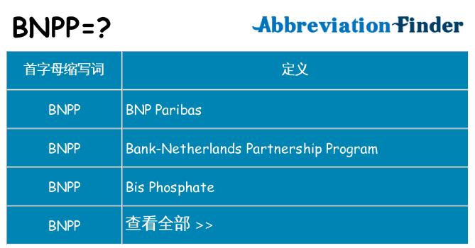 bnpp 代表什么