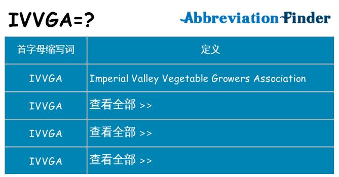 ivvga 代表什么