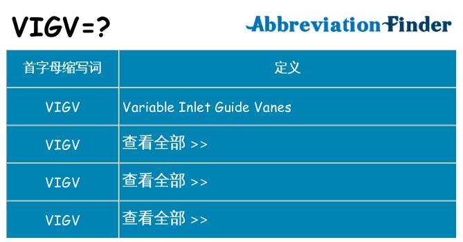 vigv 代表什么