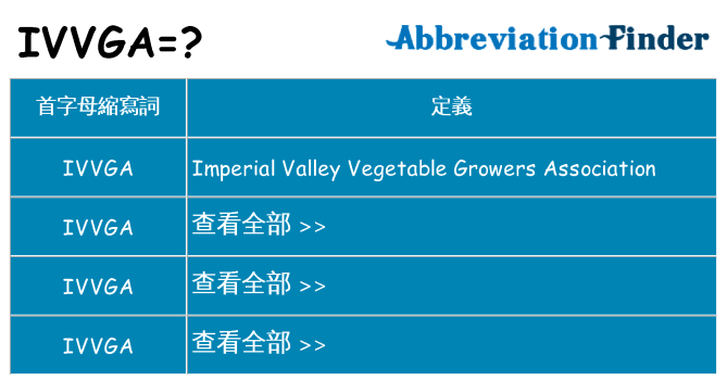 ivvga 代表什麼