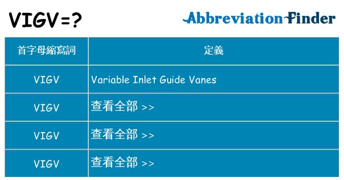 vigv 代表什麼