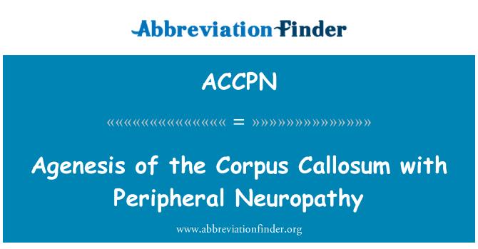 ACCPN: Agenesis of the Corpus Callosum with Peripheral Neuropathy