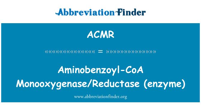 ACMR: Aminobenzoyl-CoA Monooxigenasa/reductasa (enzima)
