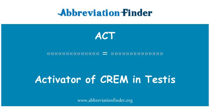 ACT: 活化劑 CREM 睾丸