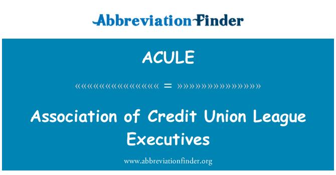 ACULE: Association of Credit Union League Executives