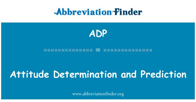 ADP: Attitude Determination and Prediction