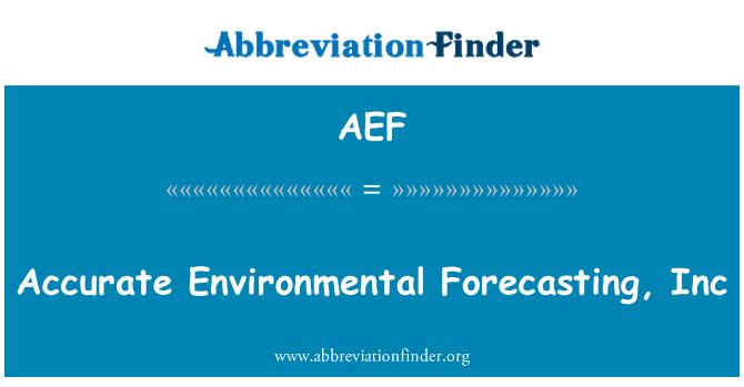 AEF: Täpne keskkonna prognoosimine, Inc