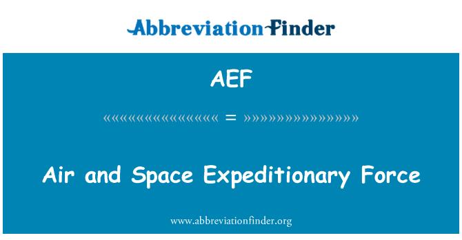 AEF: Õhku ja ruumi ekspeditsiooni Force
