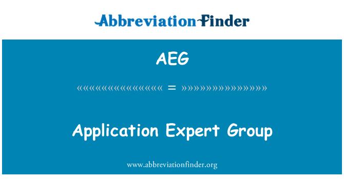 AEG: Application Expert Group