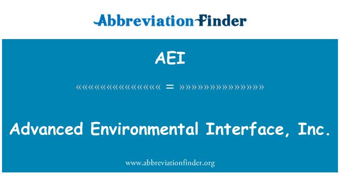 AEI: Advanced Environmental Interface, Inc.