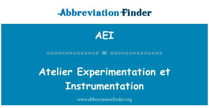 AEI: Atelier Experimentation et Instrumentation