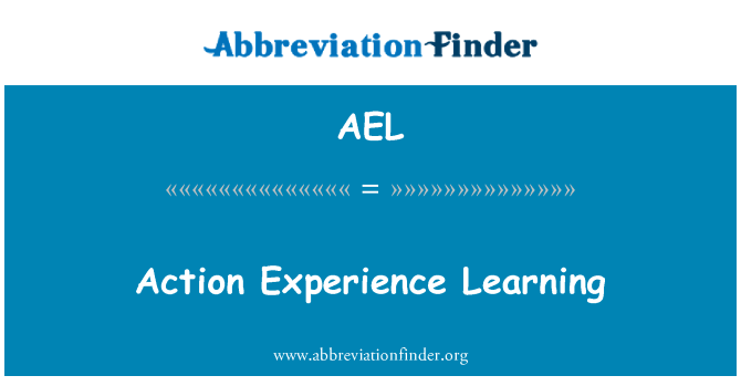 AEL: Action Experience Learning