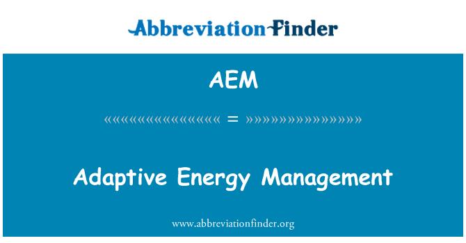 AEM: Gestión de la energía adaptativa