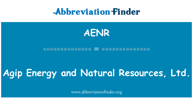 AENR: Agip Energy and Natural Resources, Ltd.