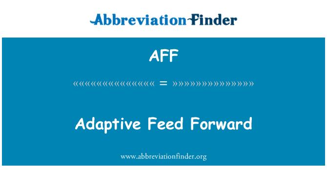 AFF: Adaptive Feed Forward