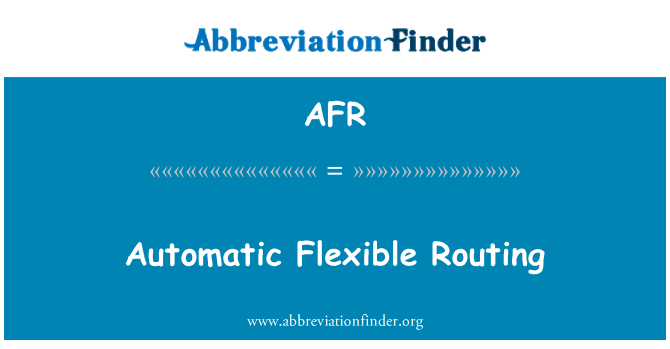 AFR: Automatic Flexible Routing