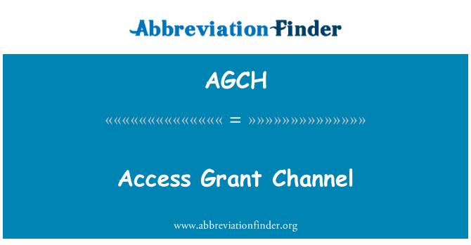 AGCH: Erişim Grant kanal