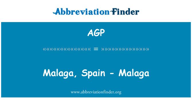 AGP: Malaga, Spain - Malaga