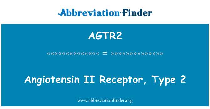 AGTR2: Angiotensin II Receptor, Type 2