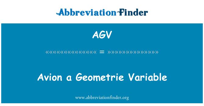 AGV: Avion a Geometrie Variable