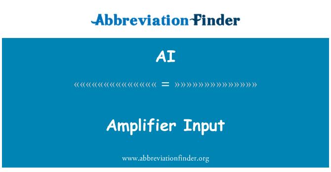 AI: Amplifier Input