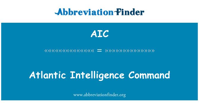 AIC: Atlantic Intelligence Command