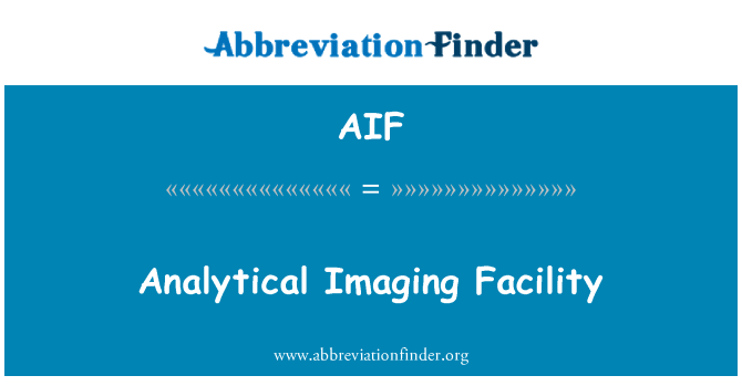 AIF: Analytical Imaging Facility