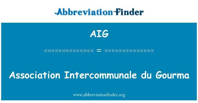 AIG: Association Intercommunale du Gourma