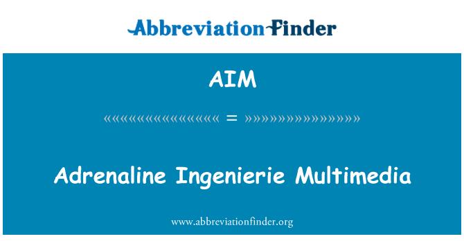AIM: Adrenaline Ingenierie Multimedia