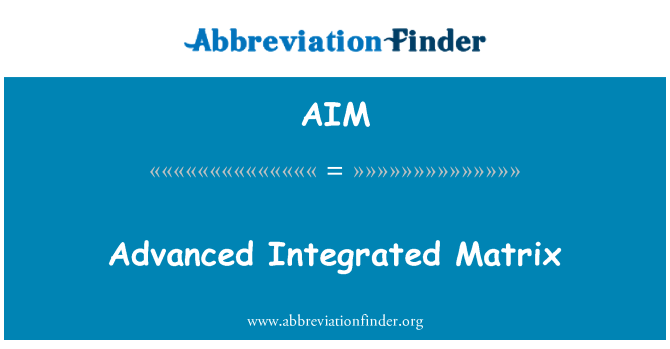 AIM: Advanced Integrated Matrix