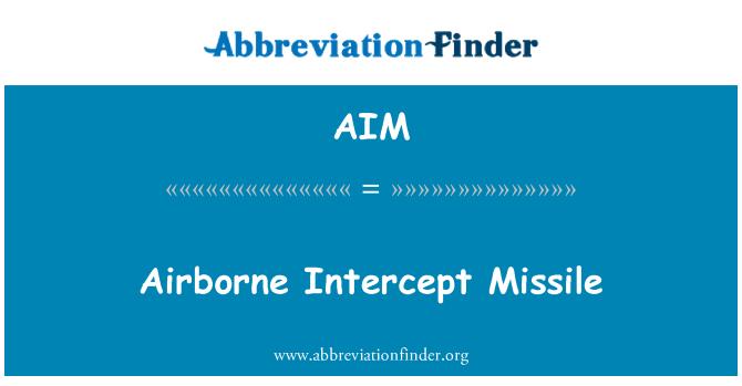 AIM: Airborne Intercept Missile