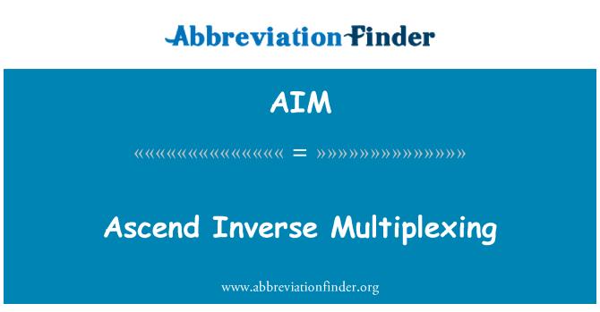 AIM: Ascend Inverse Multiplexing