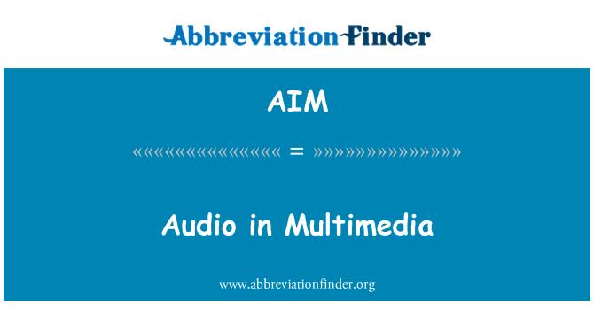 AIM: Audio in Multimedia
