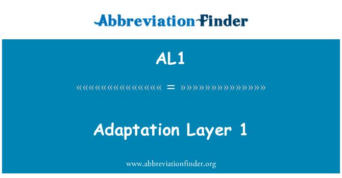 AL1: Adaptation Layer 1
