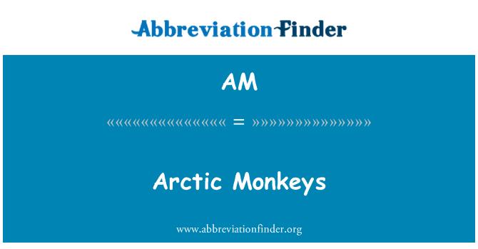 AM: Arctic Monkeys
