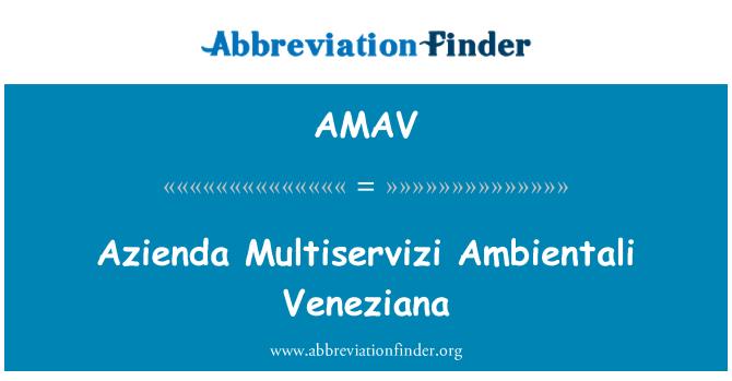 AMAV: Azienda Multiservizi Ambientali Veneziana