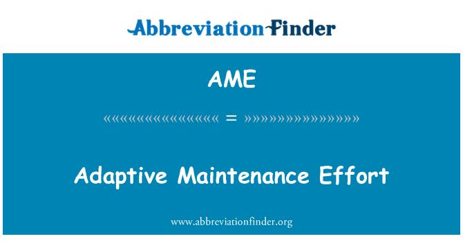 AME: Adaptive Maintenance Effort