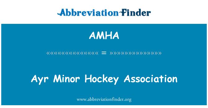AMHA: Ayr küçük hokey Derneği