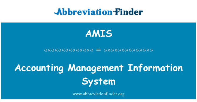 AMIS: Accounting Management Information System
