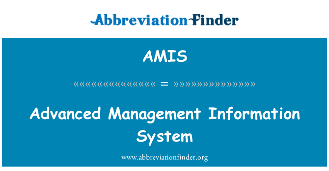 AMIS: Advanced Management Information System