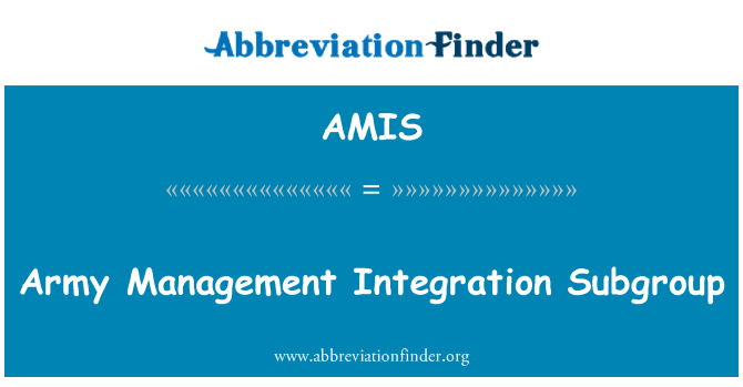 AMIS: Army Management Integration Subgroup