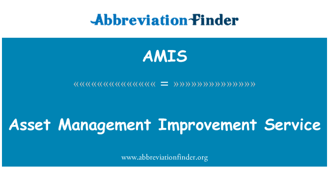 AMIS: Asset Management Improvement Service
