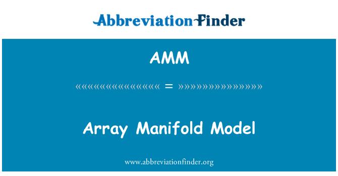 AMM: Array Manifold Model