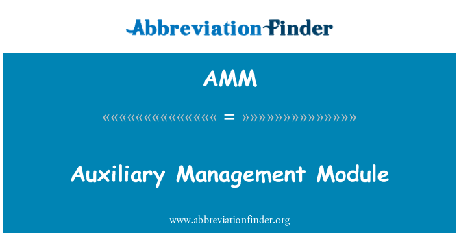 AMM: Auxiliary Management Module