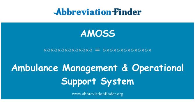 AMOSS: Ambulans yönetimi & operasyonel destek sistemi
