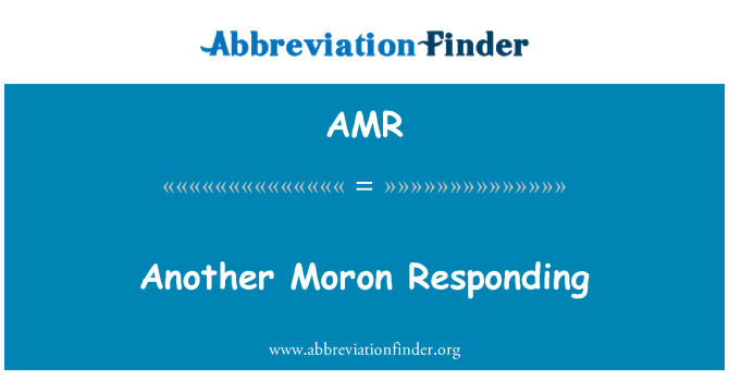 AMR: Another Moron Responding