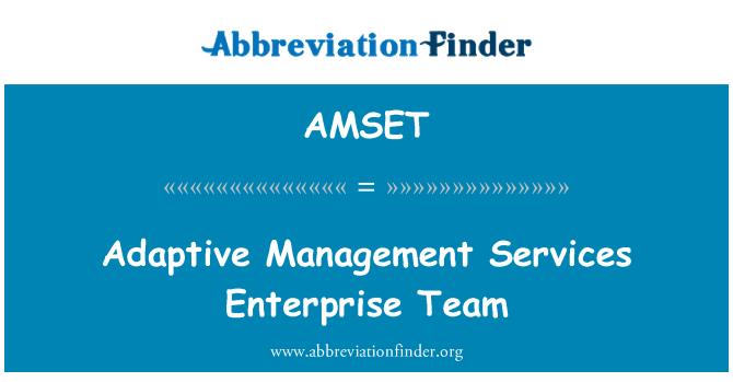 AMSET: Adaptive Management Services Enterprise Team