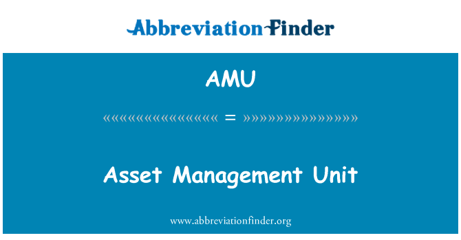 AMU: Asset Management Unit