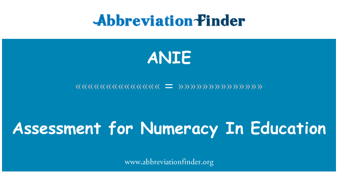 ANIE: Assessment for Numeracy In Education